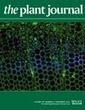 Synthetic nucleases for genome engineering in plants: prospects for a bright future - Puchta - The Plant Journal - Wiley Online Library | Plant Breeding and Genomics News | Scoop.it