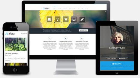Is a Premium Theme Worth The Price? - Premium WordPress Themes - Theme4Press | Designing | Scoop.it