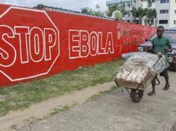 SA negating Ebola role: expert | Virology News | Scoop.it