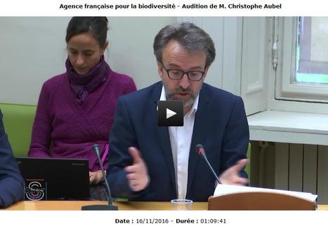 Agence française pour la biodiversité - Audition de M.Christophe Aubel au Sénat | PnCal -revue de web | Scoop.it