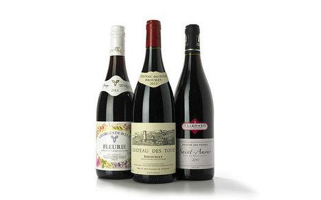 The best Beaujolais on the high street - Telegraph.co.uk | Beaujolais | Scoop.it