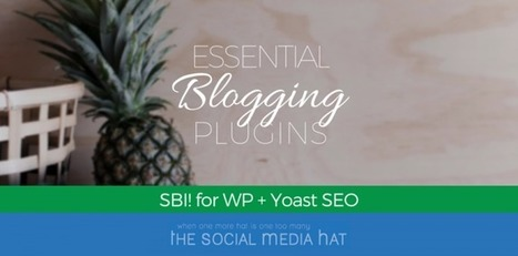 SBI! for WordPress and Yoast SEO Are Essential Plugins for Blogging | The Content Marketing Hat | Scoop.it
