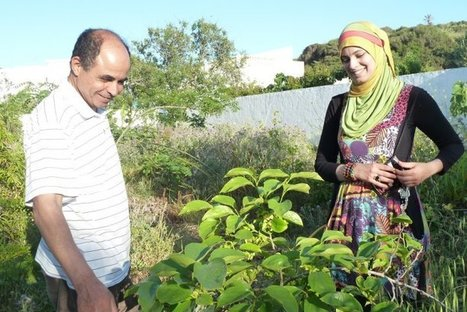 En Tunisie, le mouvement naissant d'une permaculture citoyenne | Innovation sociale | Scoop.it