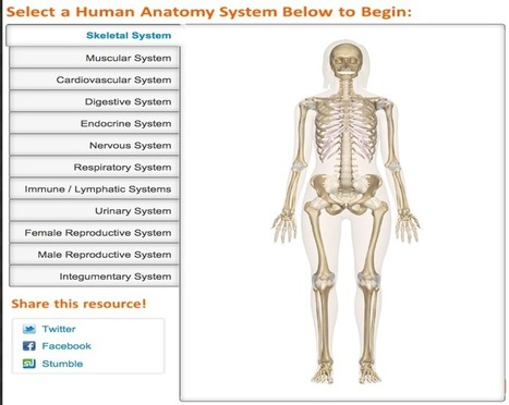 Great Websites to Teach Anatomy of Human Body in 3D | Teaching Tools Today | Scoop.it