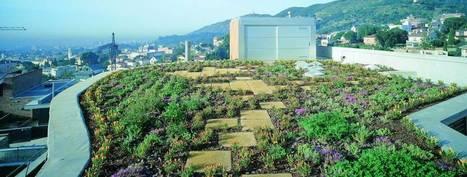 Ponga un jardín en el tejado   INGENIERIA CIVIL   Scoop.it