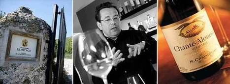 """""""Your best wines are never the consequence of your genius""""   Vitabella Wine Daily Gossip   Scoop.it"""