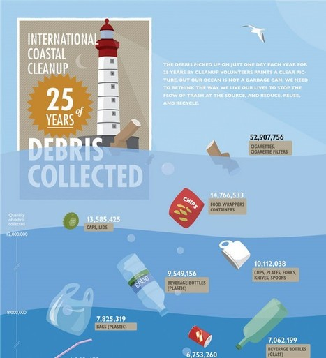 International Coastal Cleanup: 25 years of Debris Collected | green infographics | Scoop.it