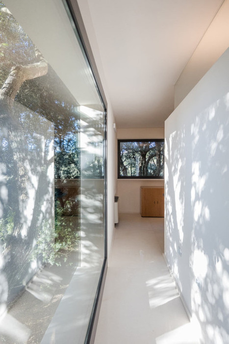 A House in the Woods of Sassari, Italy - Design Milk | CLOVER ENTERPRISES ''THE ENTERTAINMENT OF CHOICE'' | Scoop.it