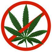 Wordt wiet legaal in Amerika? | Medicinale-cannabis | Scoop.it