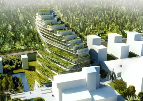 Green School stockholm | 3XN - Arch2O.com | Green Living | Scoop.it