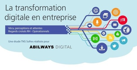 La transformation digitale en entreprise | TNS Sofres | Tout sur les réseaux sociaux et le commerce | Scoop.it