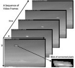 Two-dimensional thermal video analysis of offshore bird and bat flight | Bat Biology and Ecology | Scoop.it