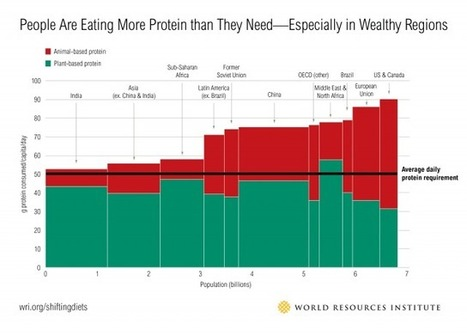 People Are Eating More Protein than They Need—Especially in Wealthy Regions | World Resources Institute | ELM-  Food Security | Scoop.it