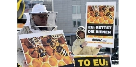Pesticides: les abeilles restent sans protection dans l'UE | Apiculture et protection de l'environnement | Scoop.it