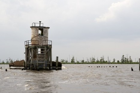 Oil And Gas Companies Won't Have To Pay For Damage Caused To Louisiana's Coast, Judge Rules | Katie Valentine | ThinkProgress.org | Farming, Forests, Water, Fishing and Environment | Scoop.it