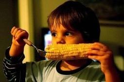 Health Freedom Alliance » FDA Ignored OWN Scientist Warnings About GMOs | Annie Haven | Haven Brand | Scoop.it
