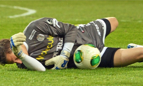 Belgium's Marc Wilmots adds keeper Sammy Bossut to World Cup squad - The Guardian | Belgium in 2014 World Cup | Scoop.it