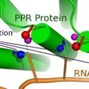 Discovery could fix RNA defects | Slash's Science & Technology Scoop | Scoop.it