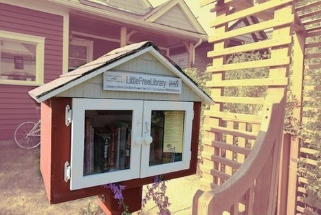 What's Wrong With a Little Free Library? | News Not Covered by the MSM | Scoop.it