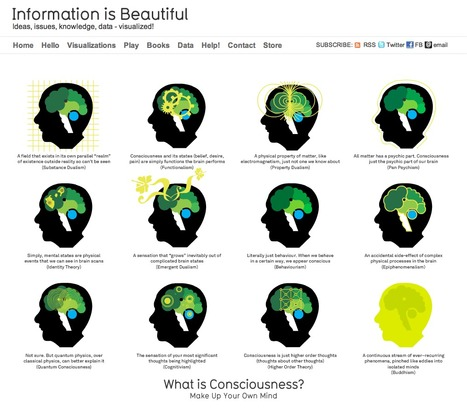 What is Consciousness?   Infographics   Scoop.it