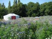 Le premier camping écologique récompensé / Actualités - Portail de l'innovation en Bretagne | Tourisme Durable, écotourisme et tourisme vert | Scoop.it