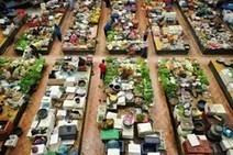 An Analogue of the Paris Rungis Food Market Will Be Built in St. Petersburg - PR Web (press release) | Projet de DA Julia | Scoop.it