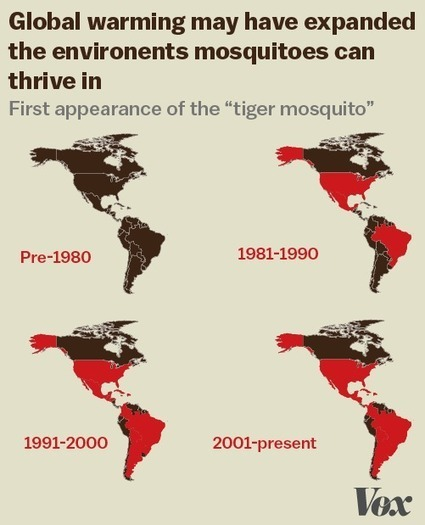 Zika virus, explained in 6 charts and maps | Aprendiendo a Distancia | Scoop.it