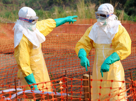 As Ebola, Mers and HIV/Aids make headlines, what are the biggest risks to the world's health? And what is being done about them? | Research Capacity-Building in Africa | Scoop.it