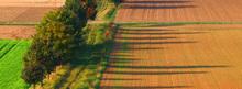 Uved : Communauté thématique agro-écologie | Nourrir la planète... autrement | Scoop.it