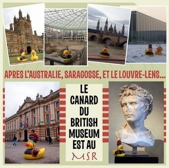 Le petit canard du British Museum fait escale à Toulouse - Toulouse Infos | Musée Saint-Raymond, musée des Antiques de Toulouse | Scoop.it