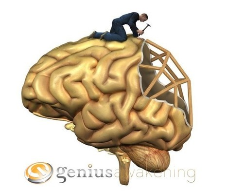5 Facts About Neuroplasticity | Genius Awakening | Facilitating Genius | Scoop.it