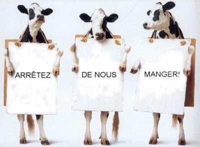Définition végétarien et végétalien. | Végétarisme, alternative alimentaire | Scoop.it