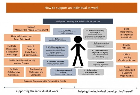 Workplace Learning: The Individual's Perspective | Évolution organisationnelle | Scoop.it