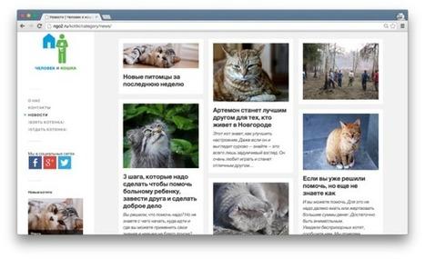 Первый бесплатный онлайн-курс «Как создать, развивать и продвигать сайт» появился в Сети | Innovation in Education | Scoop.it