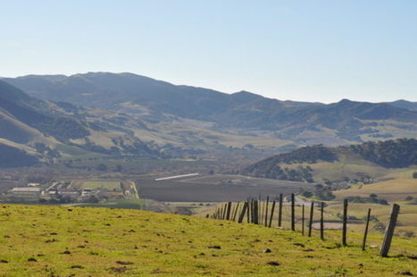 Sta Rita Hills expansion approved | Pinot Post | Scoop.it