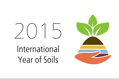 2015 International Year of Soils | ELD at a glance | Scoop.it