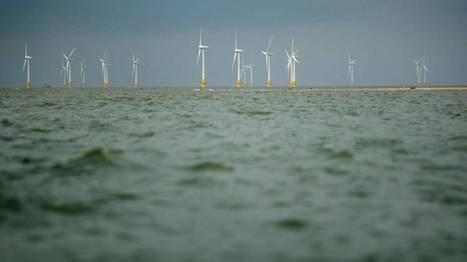 Eolien en mer: l'île d'Oléron choisie pour un nouvel appel d'offres | Energies vertes et autres | Scoop.it