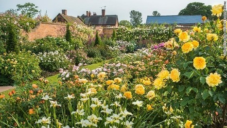 What a wonderful world: 13 fabulous gardens | All Things Rose | Scoop.it