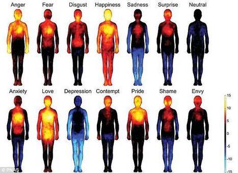 Las tantas emociones de nuestro cuerpo/the many emotions of our body:   ComunicANDO   Scoop.it