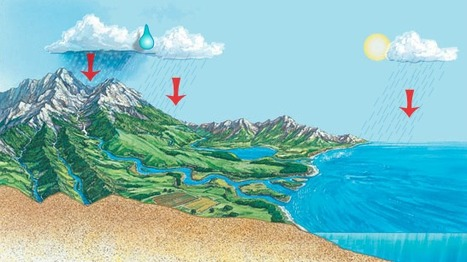 Observe a raindrop traveling through various paths of the water cycle. | Geography Ed | Scoop.it