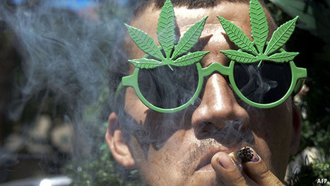The difference between legalisation and decriminalisation | Criminology and Economic Theory | Scoop.it