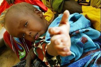 UGANDA | Biofortification is here to give hope to African Malnourished | Food & Nutrition Security in East Africa | Scoop.it
