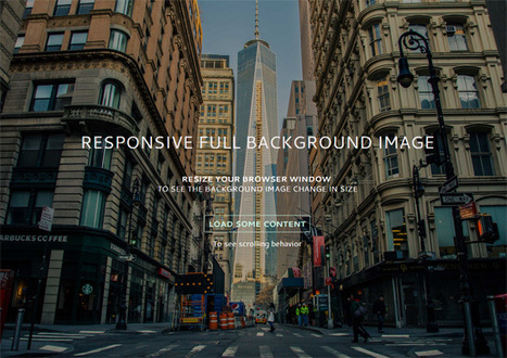Responsive Full Background Image Using CSS - Six Revisions | WordPress Website Optimization | Scoop.it