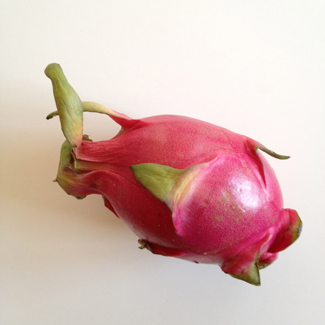 dragon fruit, chicory, cactus, rutabaga, white turnips, meyer lemon ... | Dragon fresh fruit | Scoop.it