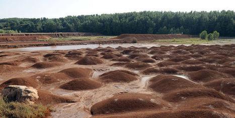 Boues rouges dans les calanques: un «blanc-seing» pour polluer, dénoncent les associations   Zones humides - Ramsar - Océans   Scoop.it
