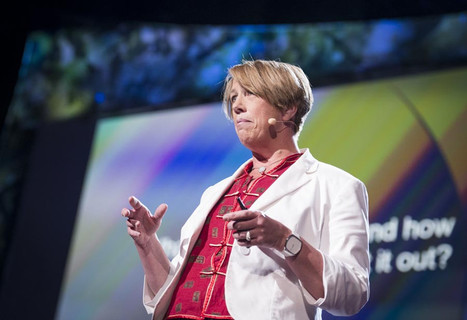 Reading minds with a brain scanner: Mary Lou Jepsen at TED2013 | TED Blog | leapmind | Scoop.it