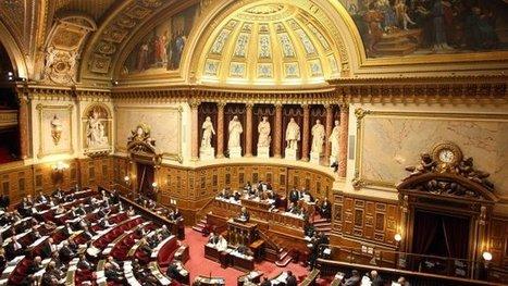 Le Sénat distingue l'information et la publicité sur le vin – - France 3 Bourgogne | Vin 2.0 | Scoop.it