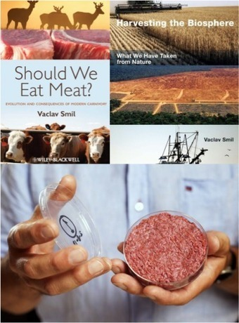 New Perspectives on Meat, Agriculture, and Food | Agriculture | Scoop.it