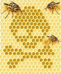 François Gerster, inspecteur général de la santé publique au chevet des apiculteurs ariégeois- ariegeNews.com | Abeilles, intoxications et informations | Scoop.it