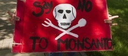 North Carolina Law Would Make It Illegal to Expose Monsanto   Plant Based Transitions   Scoop.it